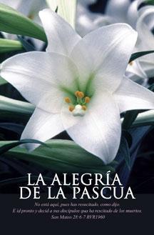 Pkg./100 Spanish Bulletins-La Alegria de la Pascua.  Save 50%.
