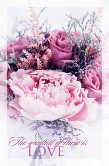 Pkg./100 Pink Roses Spanish Bulletins. Save 50%.