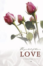 Pkg./100 Roses-I Corinth 13:13 (NIV) Bulletins. Save 50%.